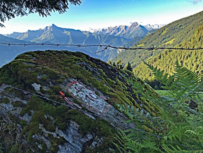 Zell am Ziller to Jausenstation Bike Climb - PJAMM Cycling