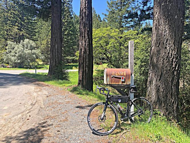 Fort Ross Road East Bike Climb - PJAMM Cycling