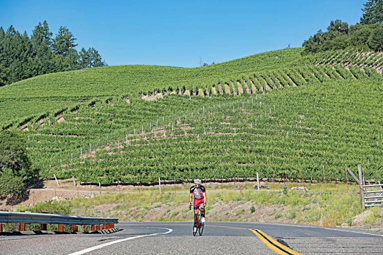 Geysers Road South Bike Climb - PJAMM Cycling