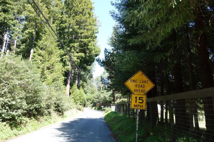 Joy Road Bike Climb - PJAMM Cycling