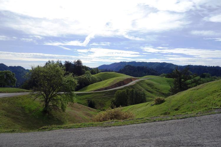 King Ridge Bike Climb - PJAMM Cycling