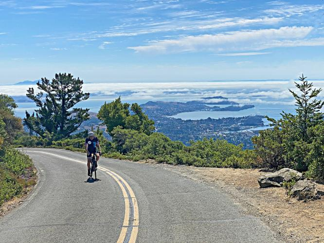 Mt. Tam from Miller Ave Bike Climb - PJAMM Cycling
