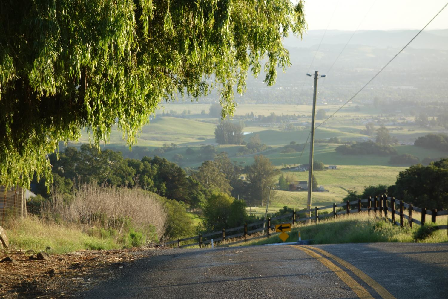 Sonoma Mountain Road West Bike Climb - PJAMM Cycling