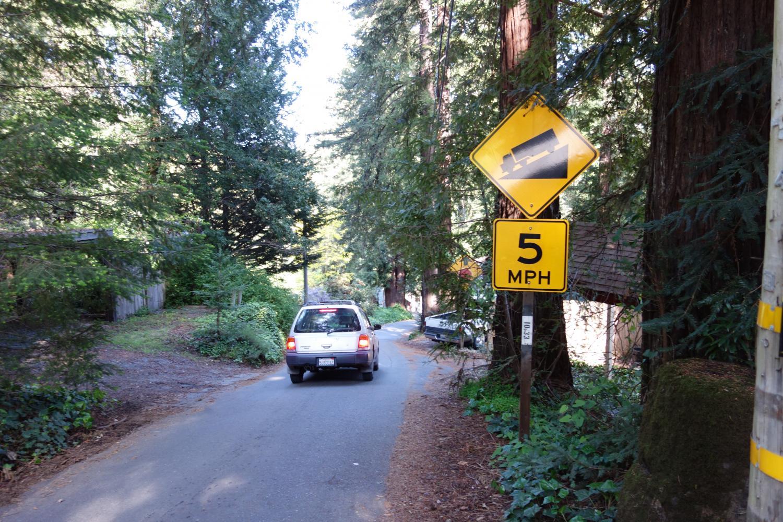 Summit Avenue Bike Climb - PJAMM Cycling