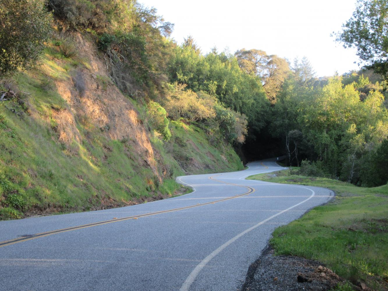 Bohlman Road Bike Climb - PJAMM Cycling