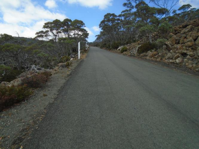 Mt Wellington Bike Climb - PJAMM Cycling