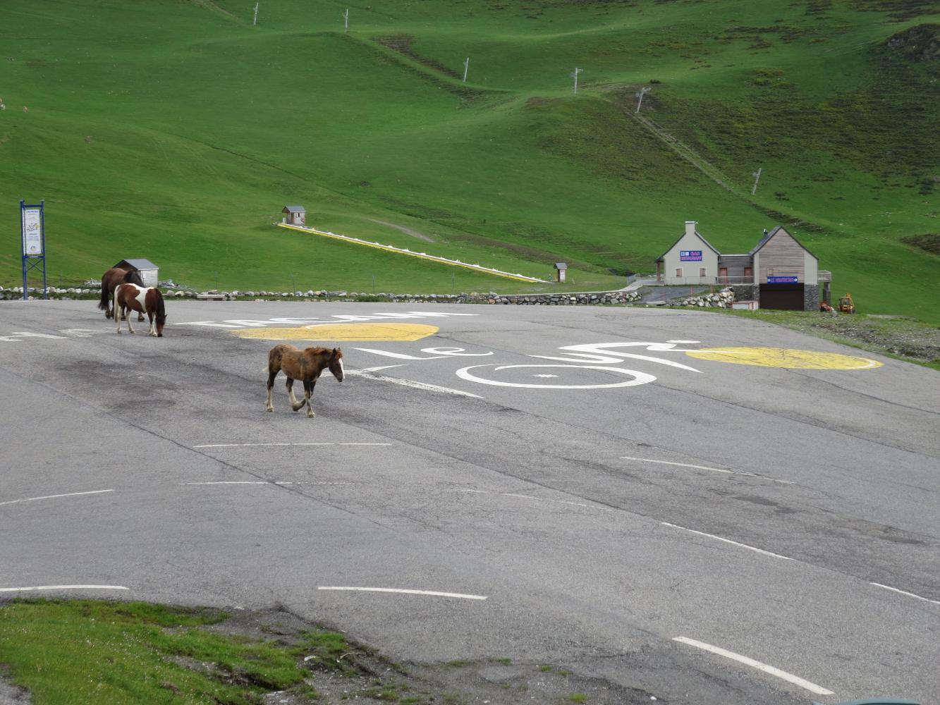 Col de Trammasel (Hautacam) Bike Climb - PJAMM Cycling