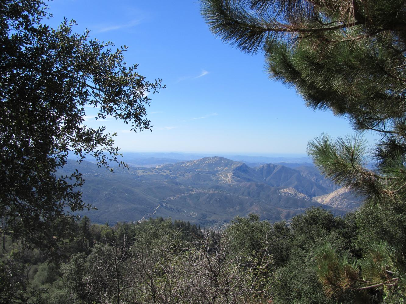 Palomar Mountain East Bike Climb - PJAMM Cycling