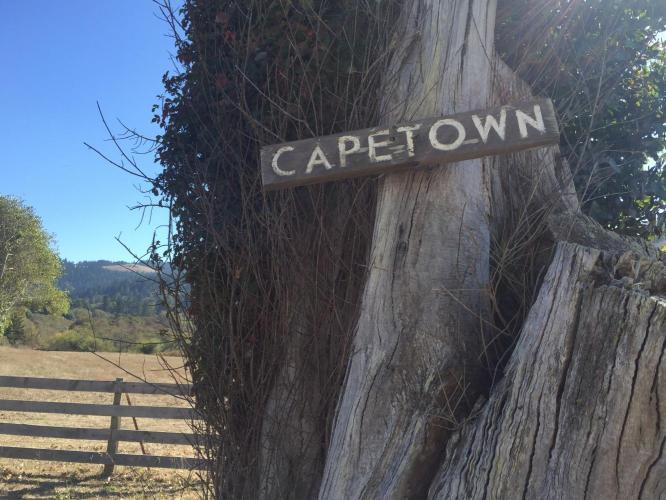 Mattole Road North from Capetown  Bike Climb - PJAMM Cycling