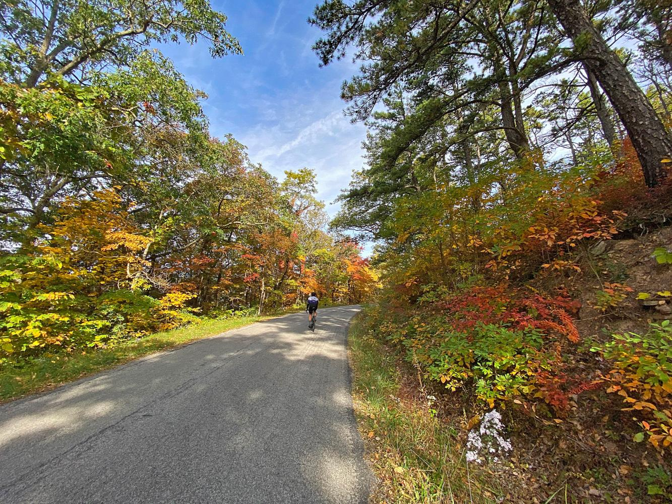 Reddish Knob (Virginia) Bike Climb - PJAMM Cycling
