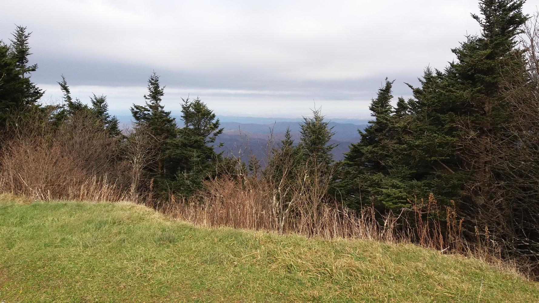 Roan Mountain South Bike Climb - PJAMM Cycling