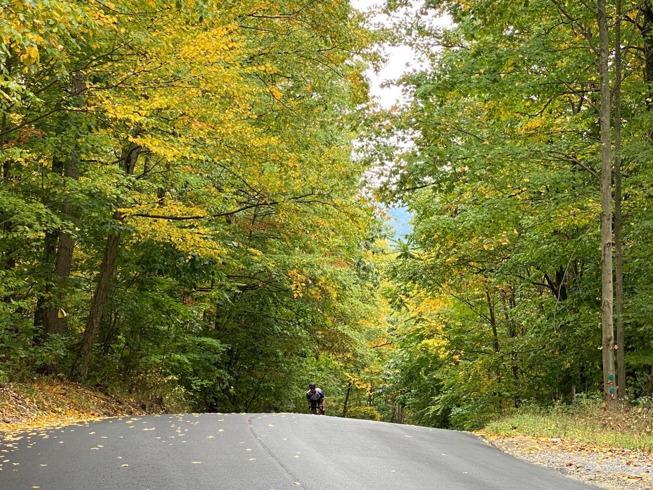 Henrietta Mountain Road Bike Climb - PJAMM Cycling