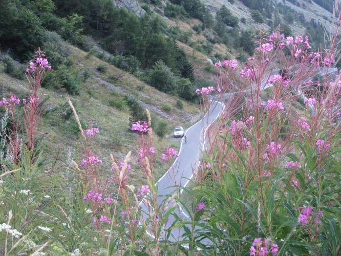 Colle de la Lombarde Bike Climb - PJAMM Cycling