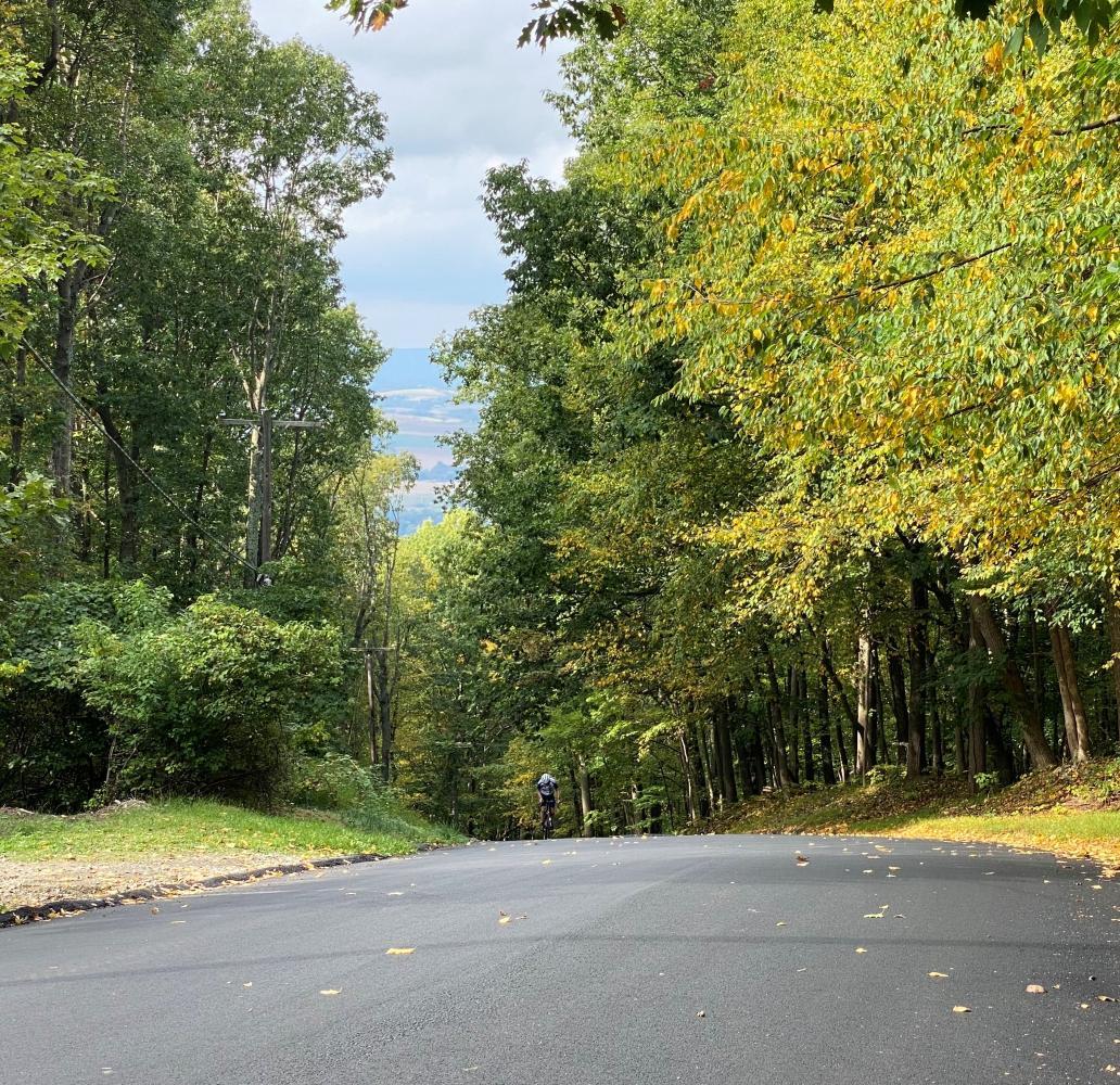 Ridge Road/Fiddlers Elbow Bike Climb - PJAMM Cycling